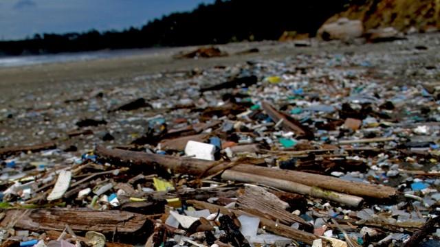 Mehr Plastik als Fische im Meer